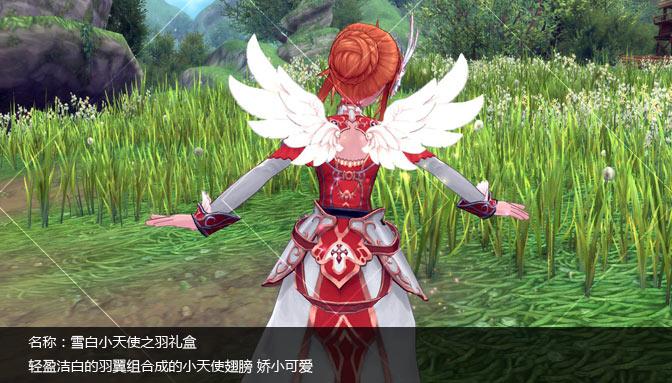 雪白小天使之羽礼盒