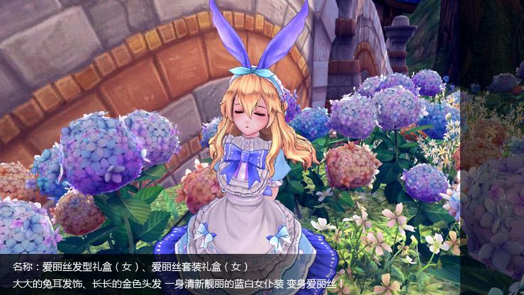 爱丽丝发型礼盒(女)、爱丽丝套装礼盒(女)