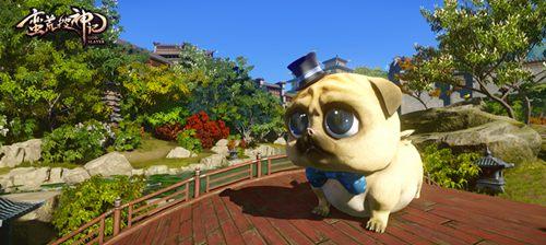 福斗犬在雷泽城场景下的实拍