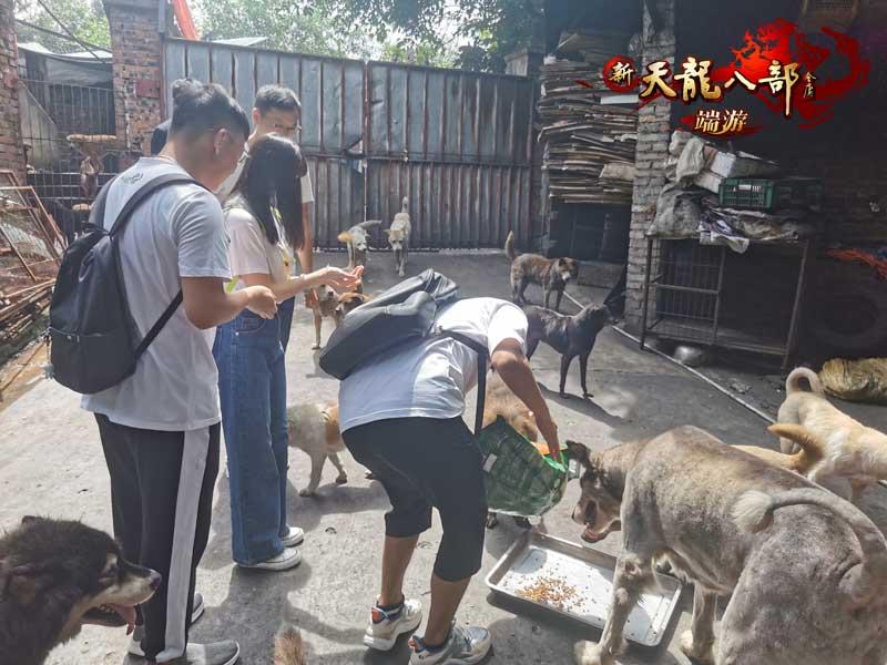 图2:重庆同城会的小哥哥和小姐姐们在喂小动物们吃饭