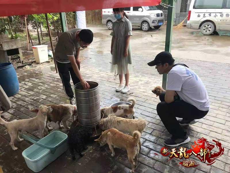 图7:陕西同城会给狗子们做饭咯